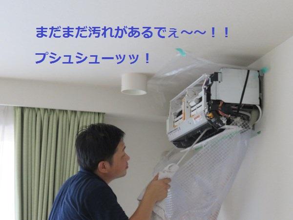 f:id:shinya-matsumura0418:20170816174753j:plain