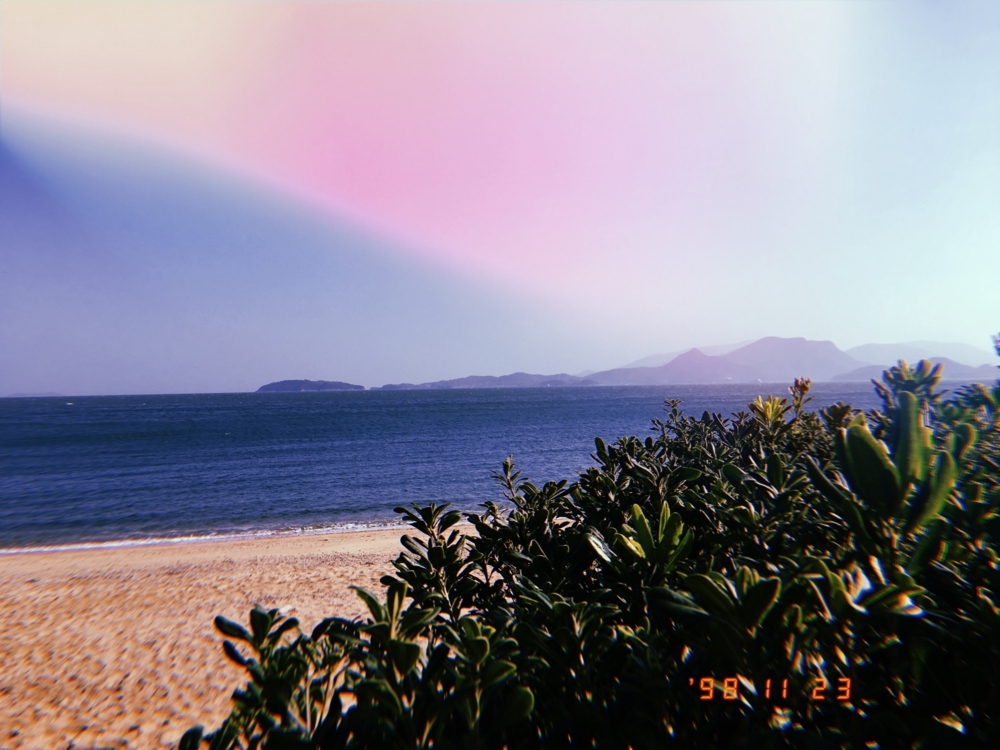 f:id:shinya-no-ringosawagi:20171228220935j:plain