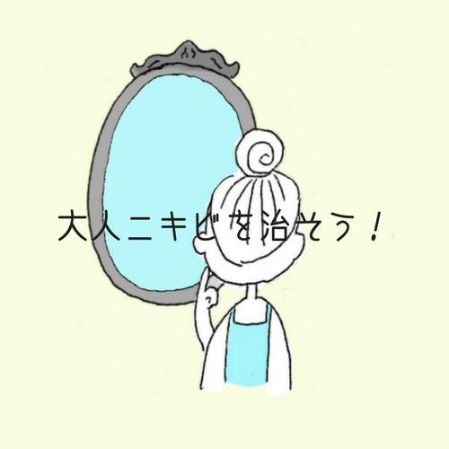 f:id:shinya-no-ringosawagi:20180128221248p:plain