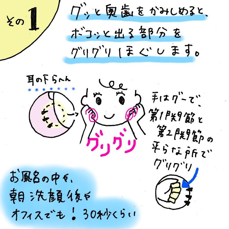 f:id:shinya-no-ringosawagi:20180210222032j:plain