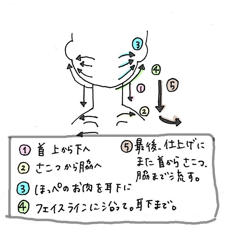 f:id:shinya-no-ringosawagi:20180210224900j:plain