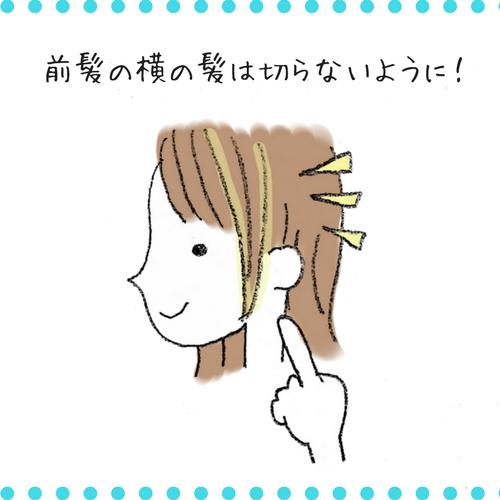f:id:shinya-no-ringosawagi:20180224232712p:plain