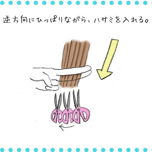 f:id:shinya-no-ringosawagi:20180225123603p:plain