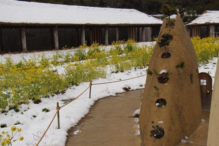 ラコリーナ近江八幡 中庭