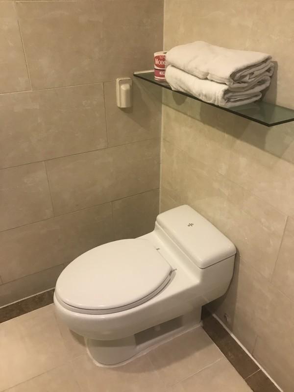 ホテルゼウメスIncheon Airport Hotel Zeumesバスルーム・トイレ