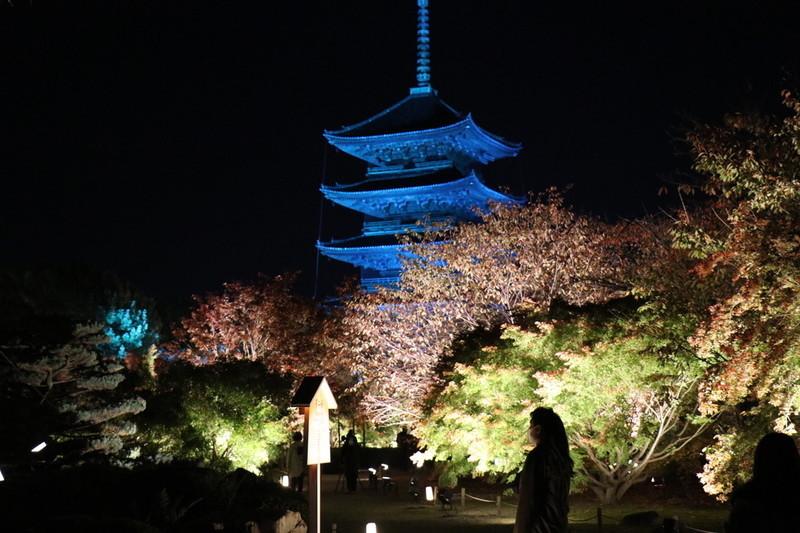 京都 世界遺産「東寺」紅葉の季節は外せないスポットのひとつ