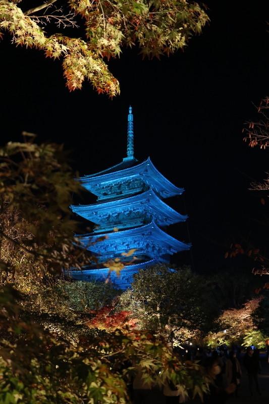 京都 世界遺産「東寺」のライトアップ
