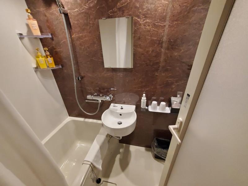 ワットホテル&スパ飛騨高山エコノミーダブルルームのバスルーム・トイレ