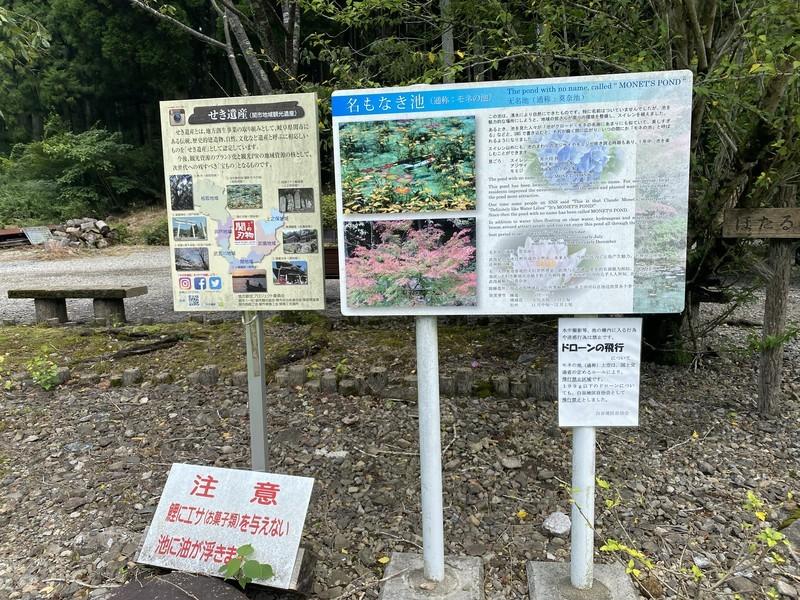 岐阜 モネの池