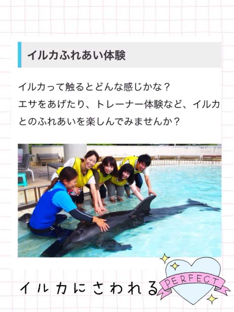 f:id:shinzobyomama:20160801115401j:plain