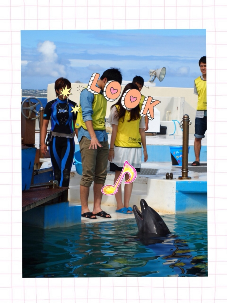 f:id:shinzobyomama:20160801115412j:plain