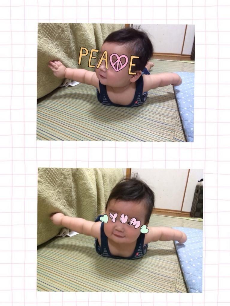 f:id:shinzobyomama:20160811131942j:plain