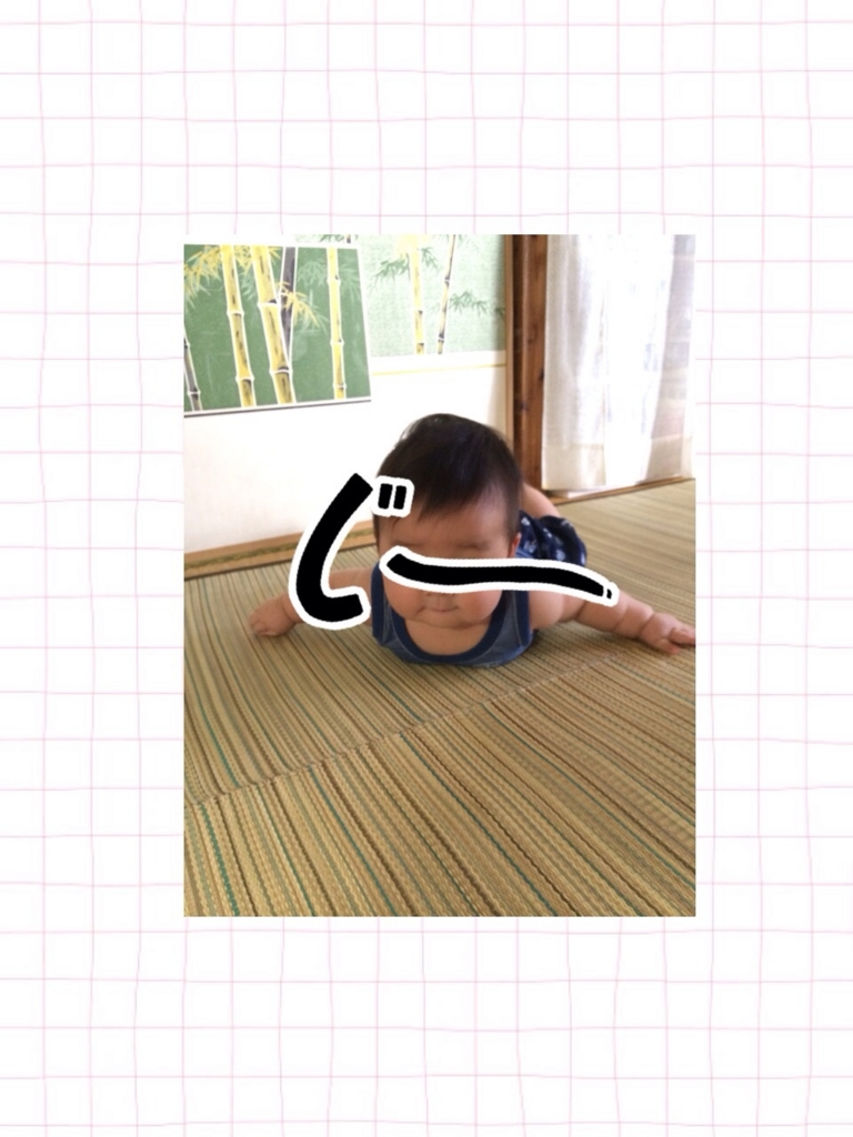 f:id:shinzobyomama:20160811132316j:plain