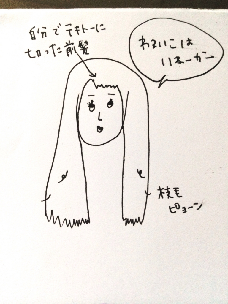 f:id:shinzobyomama:20161023175650j:plain
