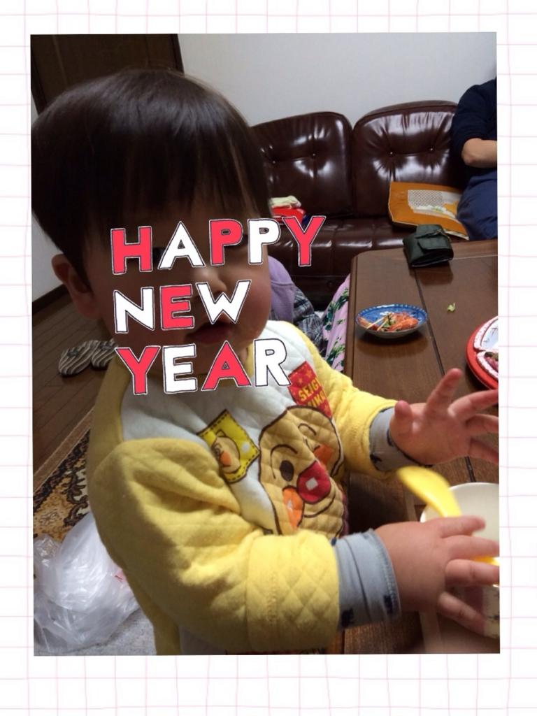f:id:shinzobyomama:20170105211829j:plain