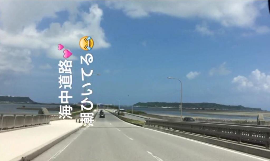 f:id:shinzobyomama:20170815115045j:image