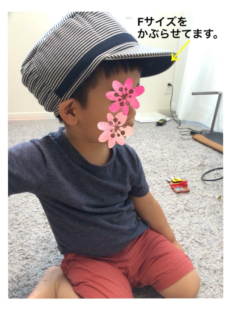 f:id:shinzobyomama:20180718102426j:plain