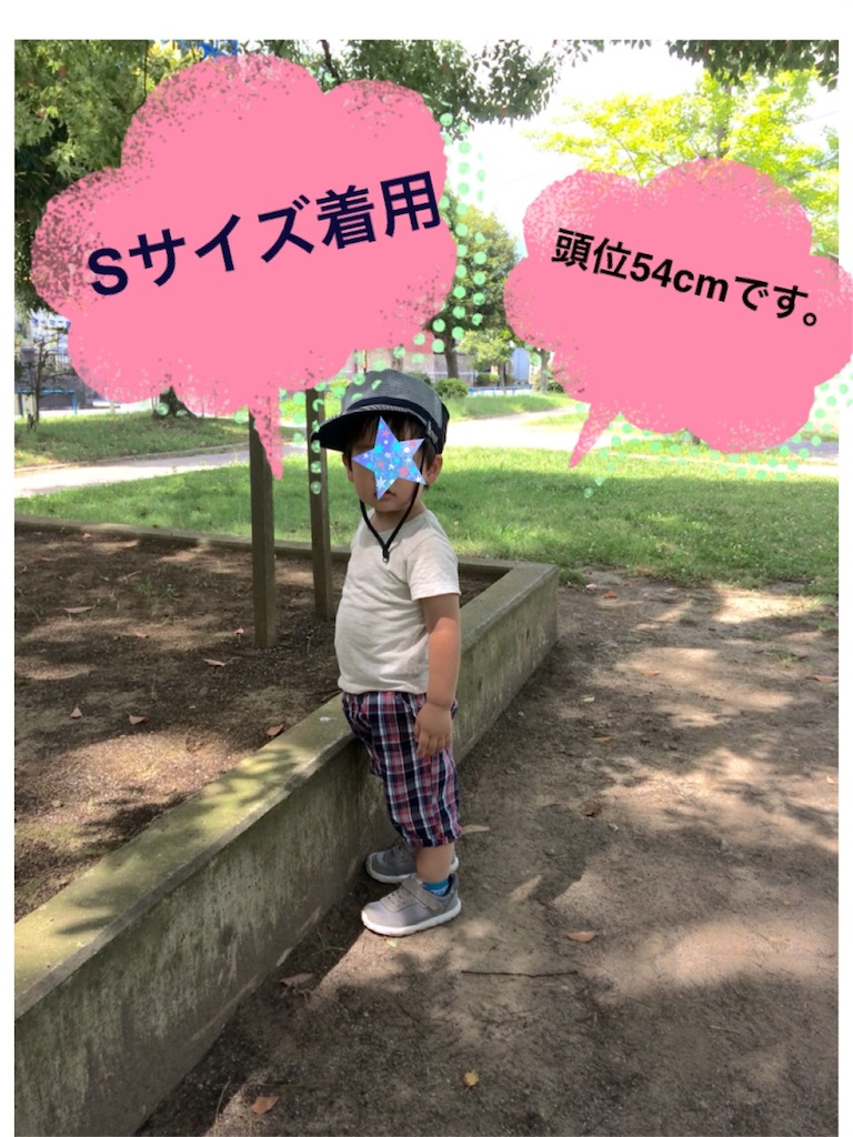 f:id:shinzobyomama:20180718111909j:plain