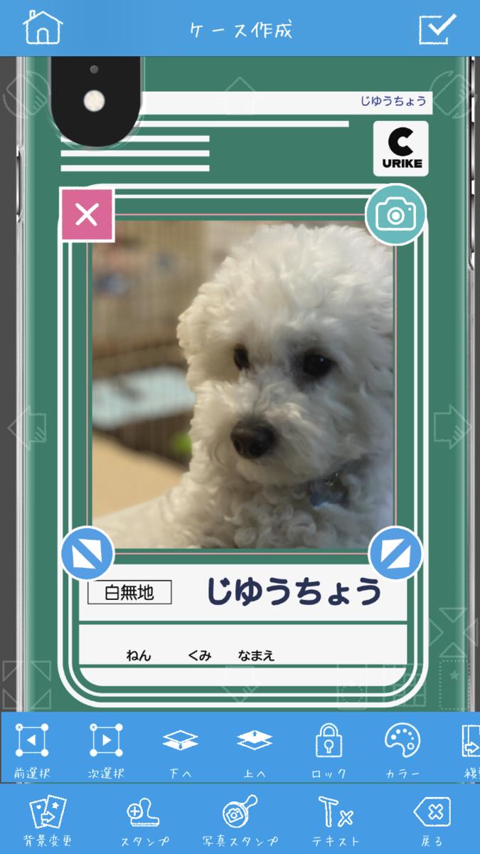 f:id:shioaji78:20200710191944p:plain