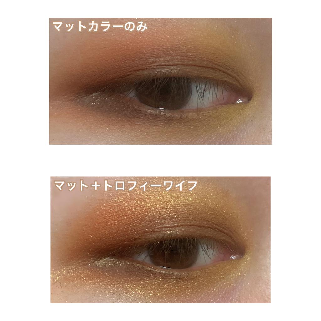 f:id:shiokara_maru:20201025220813p:image