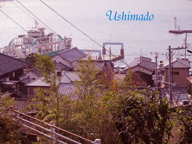 f:id:shiokazeokayama:20180617142635j:plain