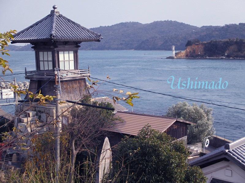 f:id:shiokazeokayama:20180617142643j:plain