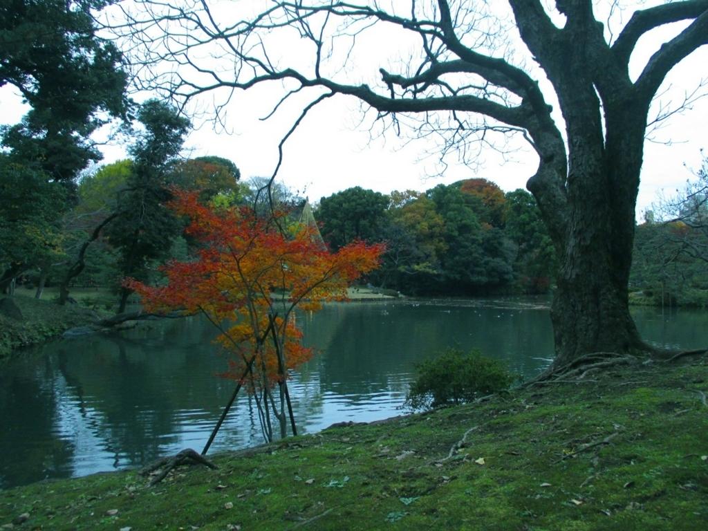 f:id:shiokazeokayama:20180812165349j:plain