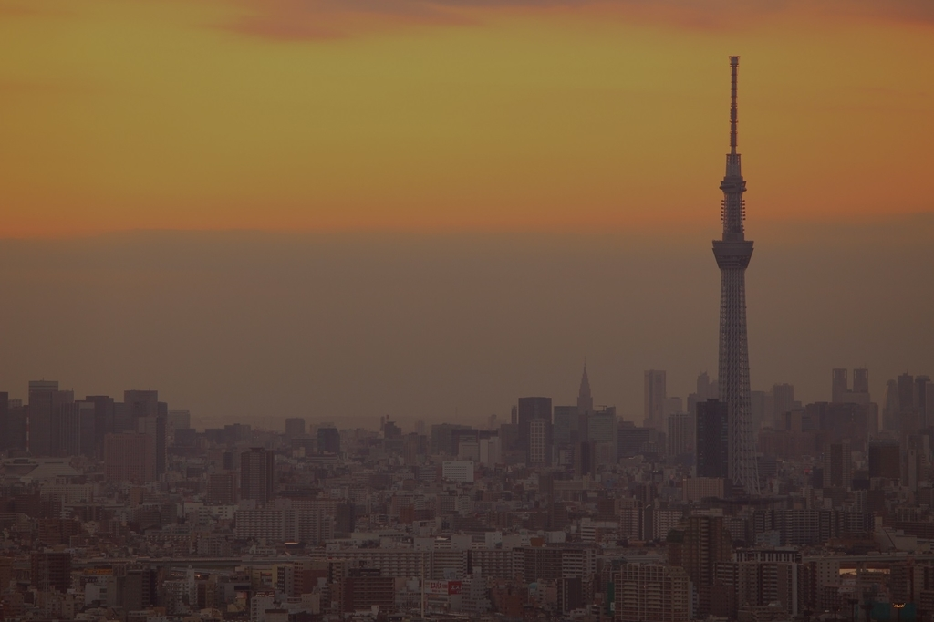 f:id:shiokazeokayama:20181118184917j:plain