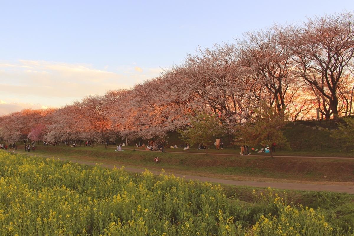 f:id:shiokazeokayama:20190401225748j:plain