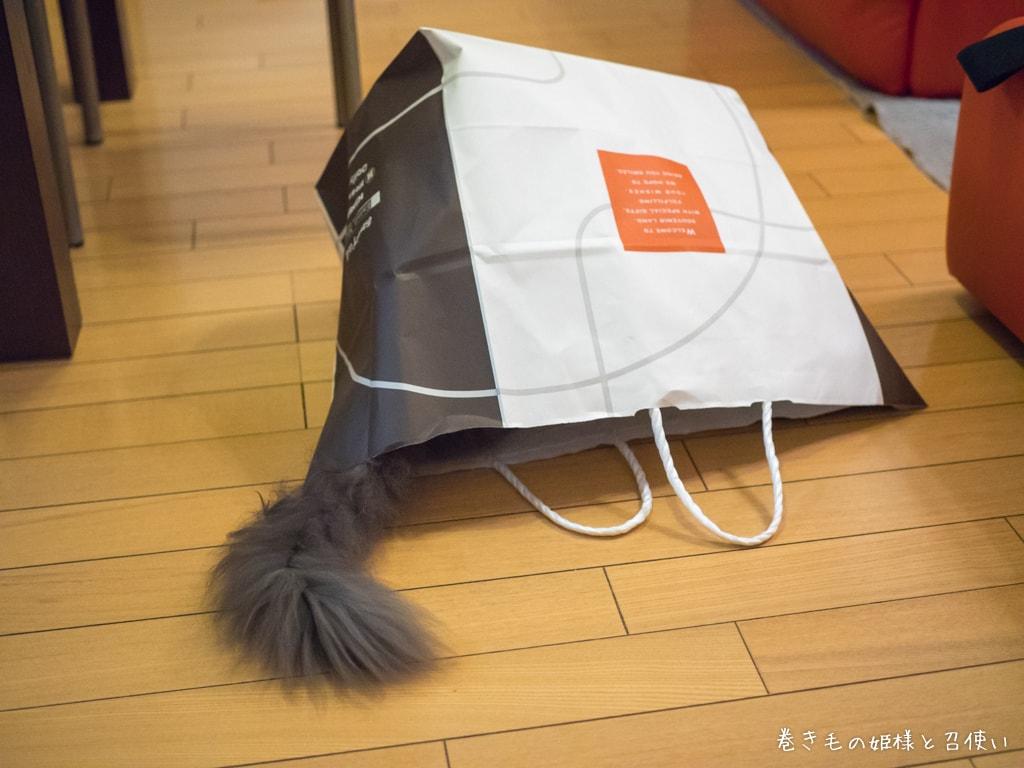 大きめの紙袋をもらった紫苑さん3