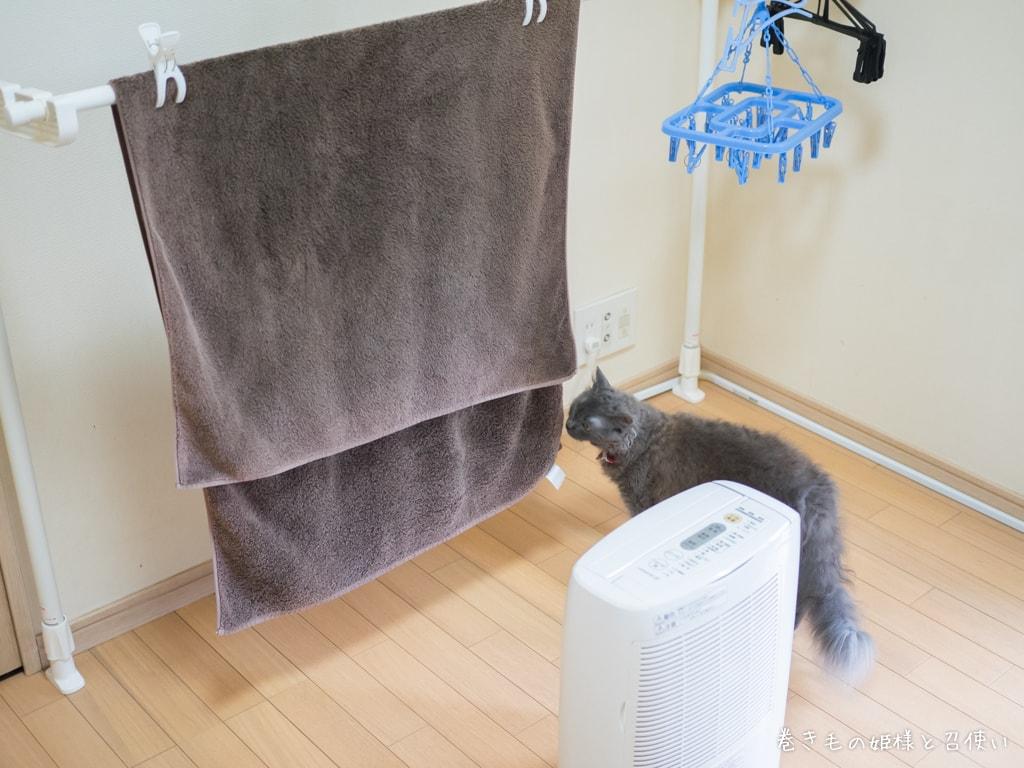 乾燥機使用例