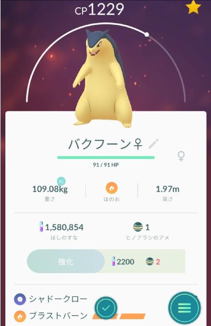 f:id:shion_poke:20181110191745j:plain