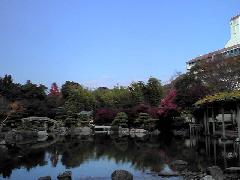 f:id:shioneri:20101121221549j:image