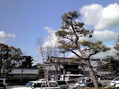 f:id:shioneri:20110122232101j:image