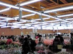f:id:shioneri:20110228110247j:image