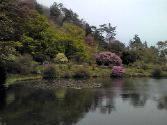 f:id:shioneri:20110430203900j:image
