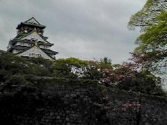 f:id:shioneri:20110501183646j:image