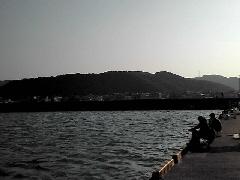 f:id:shioneri:20111106214649j:image