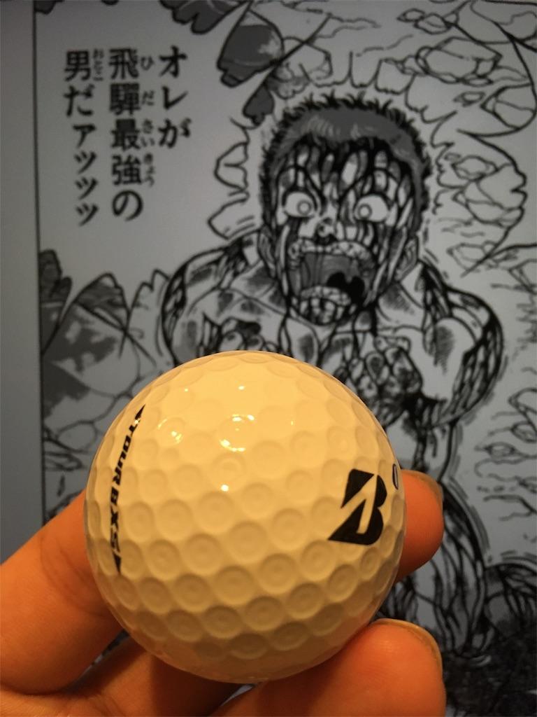 f:id:shionmurasaki:20181022211724j:plain:w380