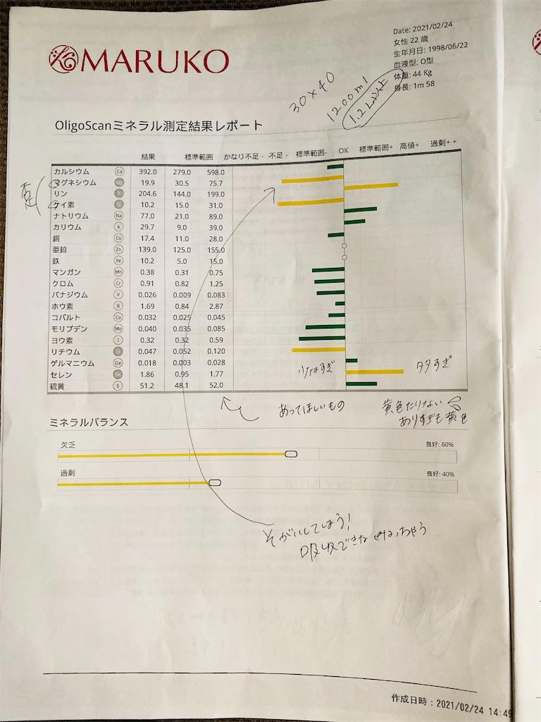 f:id:shiori_amakawa:20210311075622j:image