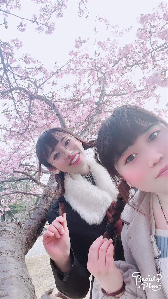 f:id:shiori_amakawa:20210318120107j:image