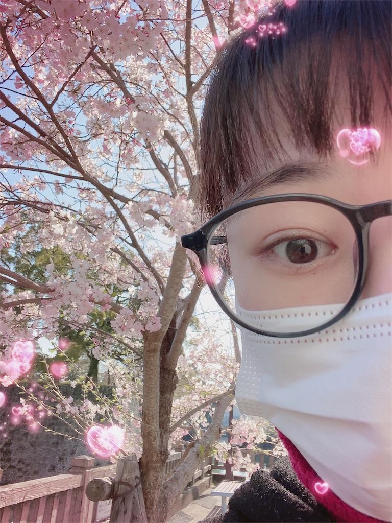 f:id:shiori_amakawa:20210326224949j:image