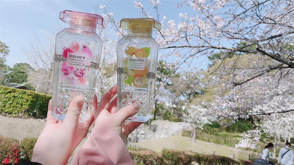 f:id:shiori_amakawa:20210327211722j:image