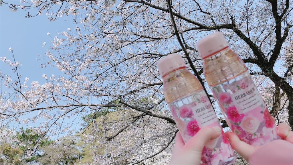 f:id:shiori_amakawa:20210328203002j:image