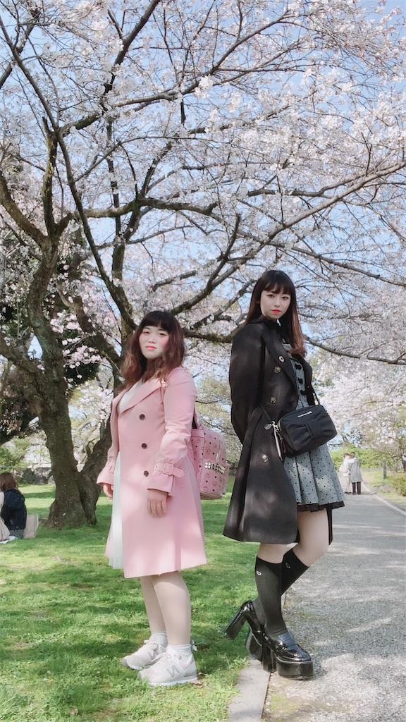 f:id:shiori_amakawa:20210328203047j:image