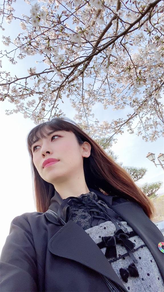 f:id:shiori_amakawa:20210402081415j:image