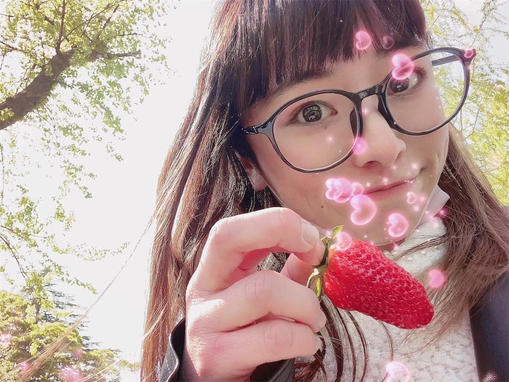 f:id:shiori_amakawa:20210406212759j:image