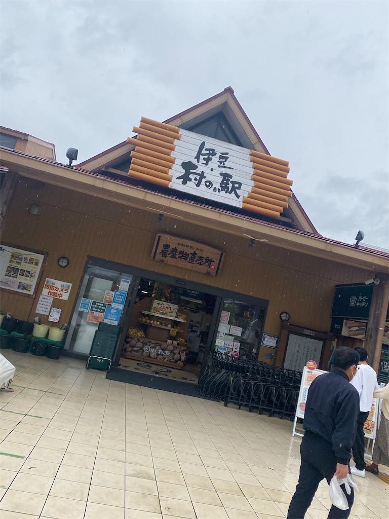 f:id:shiori_amakawa:20210417160606j:image