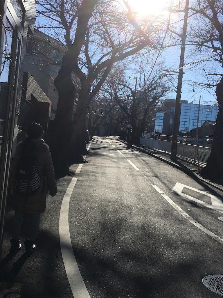 f:id:shioriito-pf:20190109234727j:image