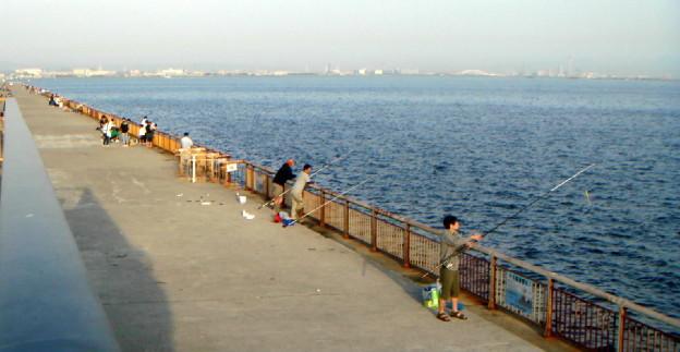 f:id:shioshiohida:20100508173755j:image